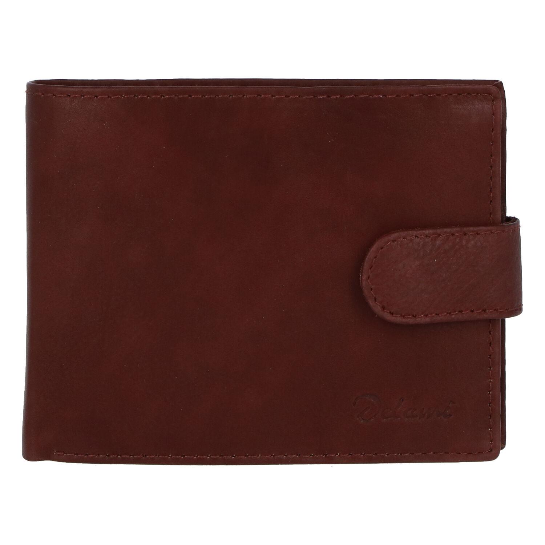 Pánska kožená peňaženka hnedá - Delami 1313CND Two