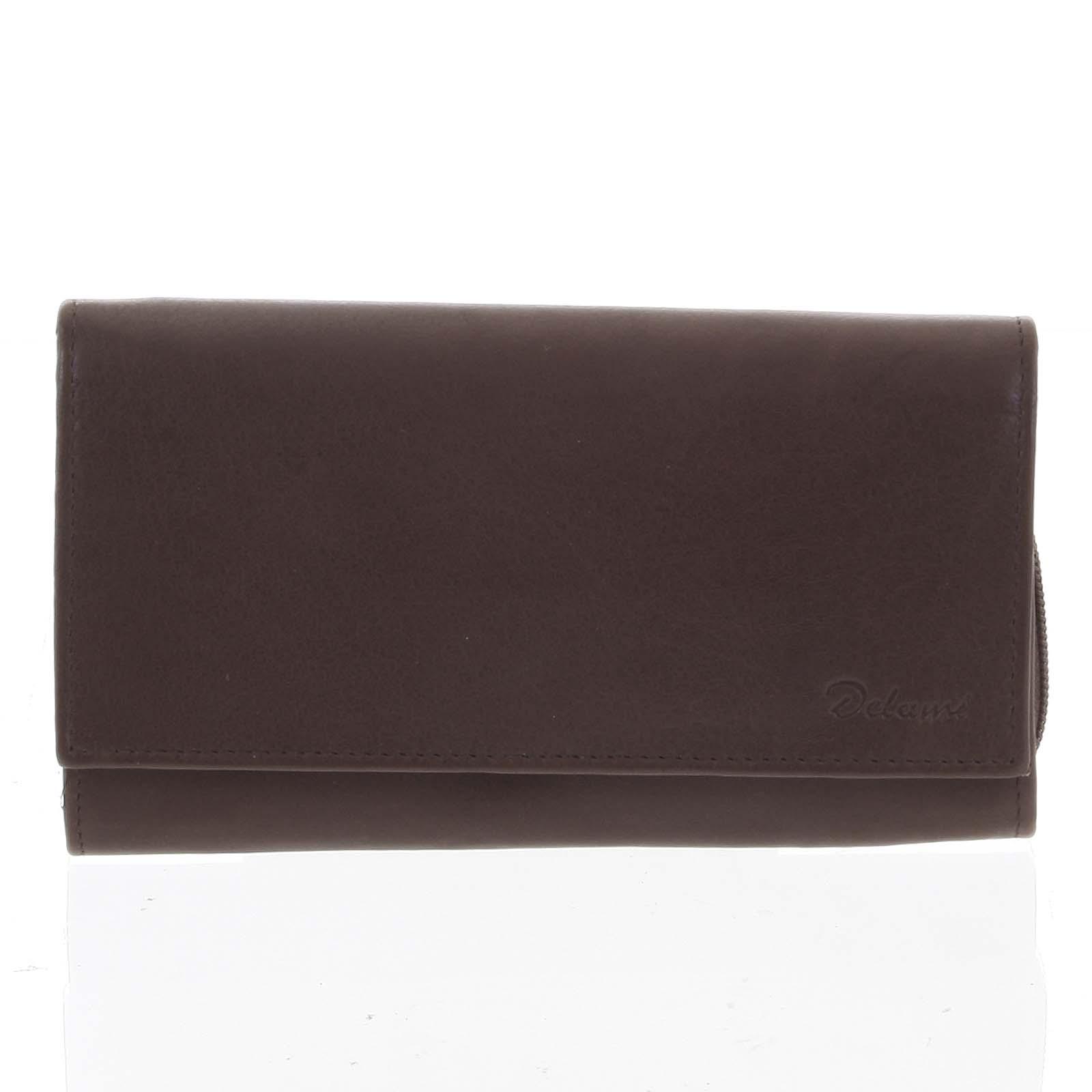 Štýlová hnedá dámska peňaženka - Delami VIPP